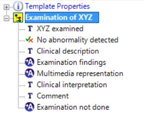 CLUSTER.exam_xyz